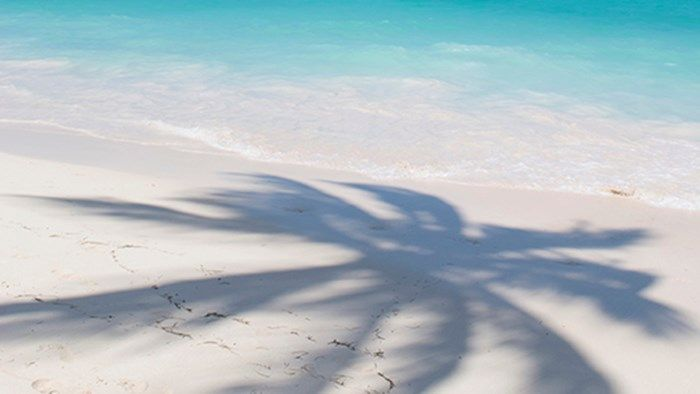 Shade of a palm tree in the sand – Island hopping in Cuba