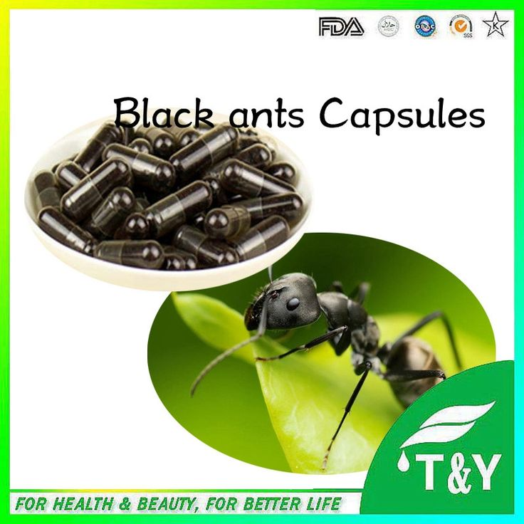natural high quality sex for men black ant powder / 10:1 Black Ant Extract capsules 500mg*800pcs/lot