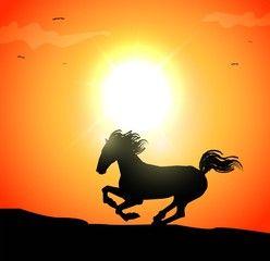 illustrazione vettoriale di cavallo al galoppo al tramonto