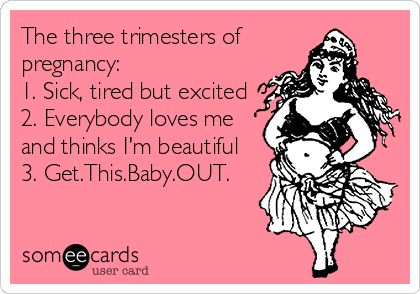The three trimesters of pregnancy: 1. Sick, tired but excited 2 ...