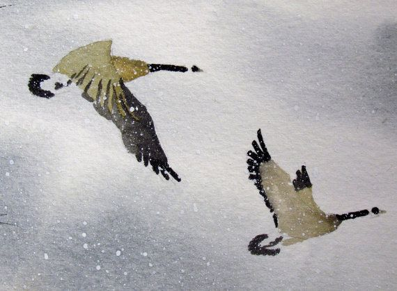 Mated for life Canadian Geese watercolor painting in by tomsoucek