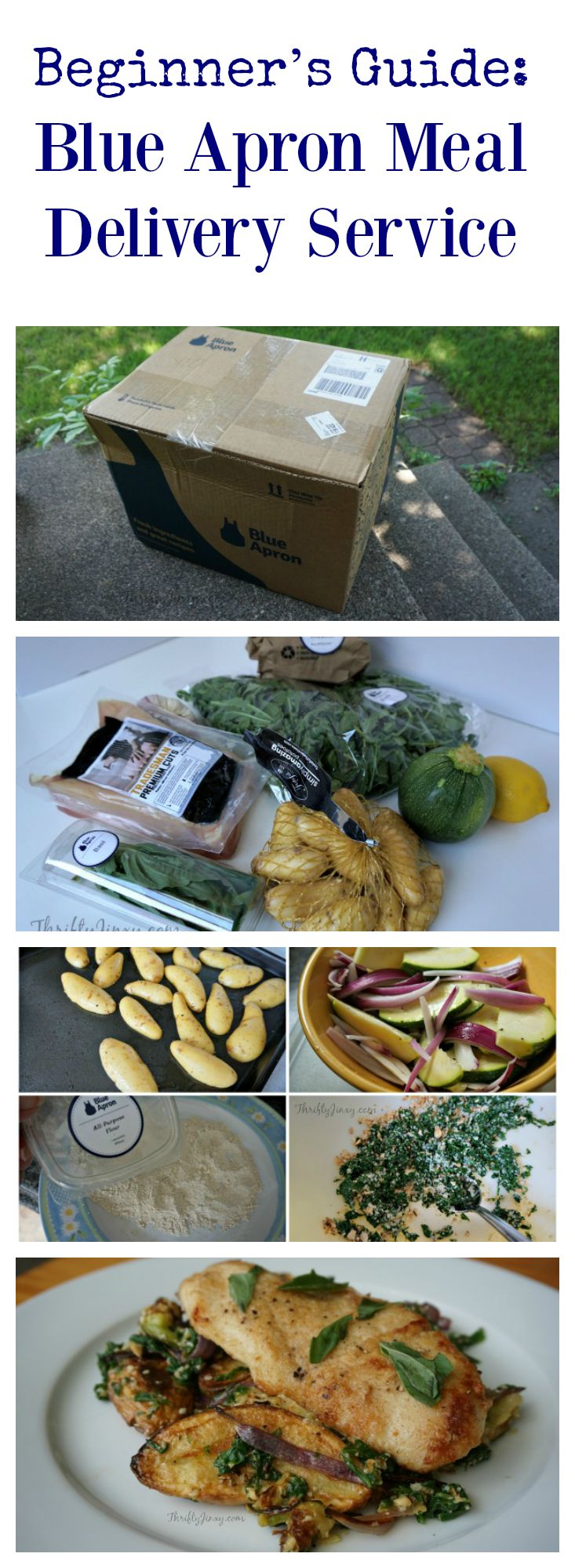 Beginner's Guide: Blue Apron Meal Delivery Service - Thrifty Jinxy