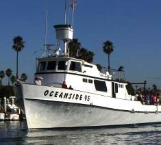55 best images about oceanside bucket list on pinterest for Oceanside fishing charters