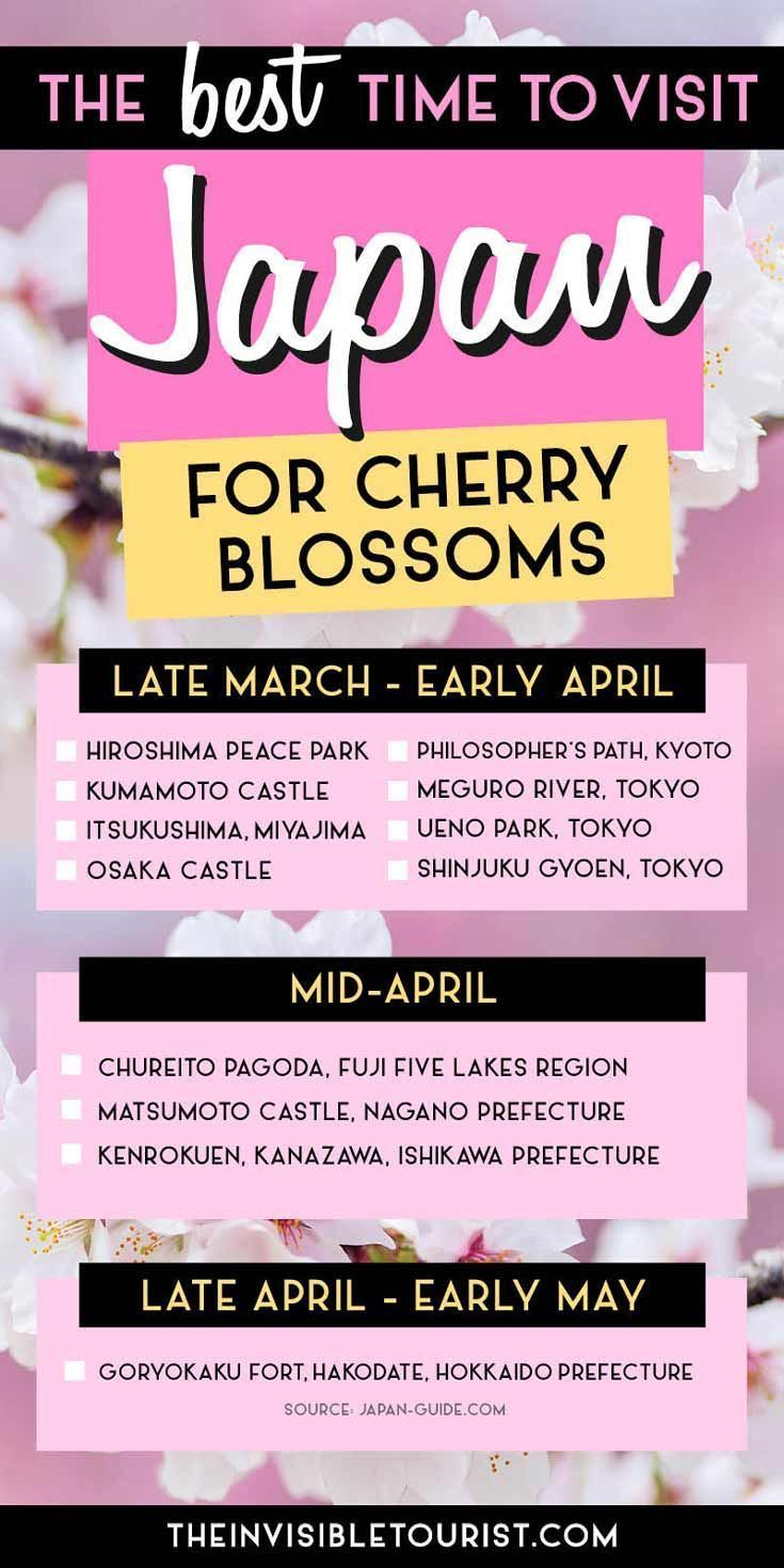 The Best Time To Visit Japan For Cherry Blossoms Revealed Japan Travel Guide Japan Travel Tips Visit Japan