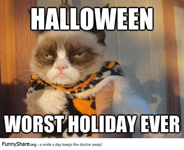 Funny Meme Halloween : Best images about grumpy cat on pinterest gift