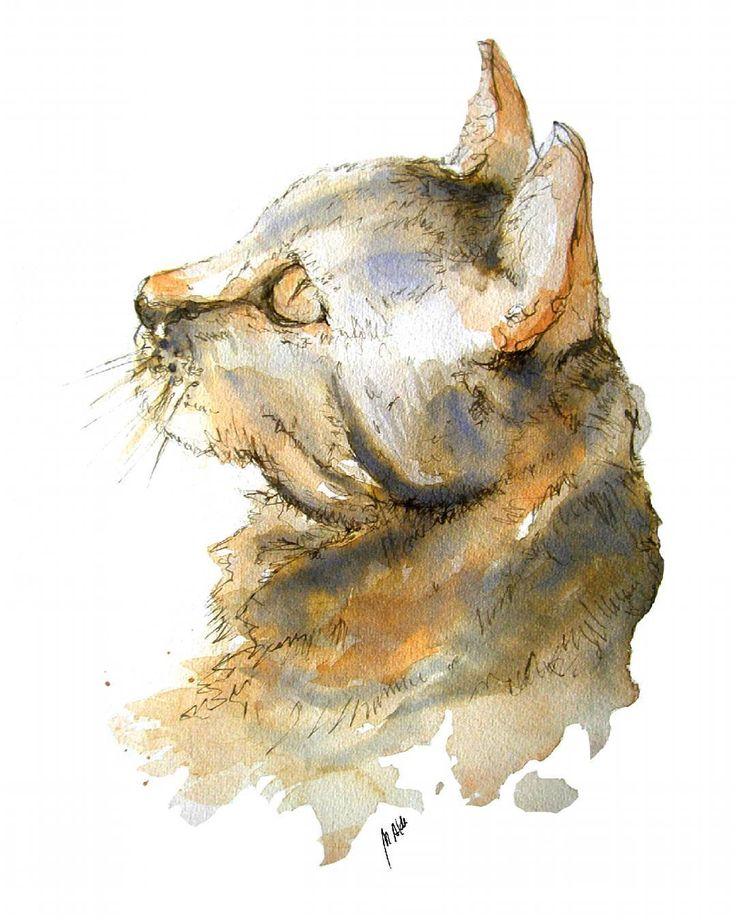 New watercolours! Kitty :) #ilustracion #illustration #drawing #dibujo #art #arte #watercolour #acuarela #ink #tintachinaart #plumilla #fineart #cat #kitty #gato #gatito #animals #pets #mascota #felinos #instanimals #instaillustration #instawatercolor #animal_creatives #instakitty #catsgram by monicaldasanz