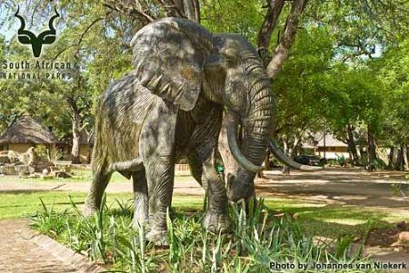KNP - Letaba - Elephant Hall