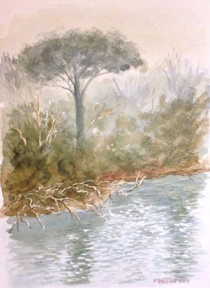 Pineta di S.Vitale - watercolour cm 25x35