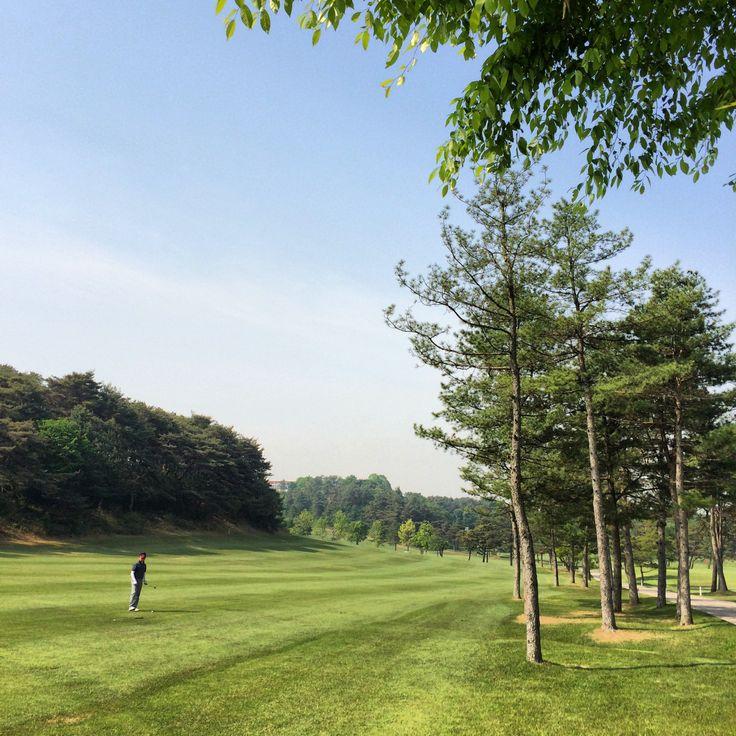 playing early in the morning.. It's beautiful spring weather! 넘넘 여유있고 행복한 시간.. 좋구나! #golf #seoul #korea #blue #sky #green #spring #happy #instacool #instagramer #골프 #봄 #하늘 #구름 #ゴルフ #空 #青空 #ソウル #韓国 #beautiful #天気 #晴れ #ball #ボール #공