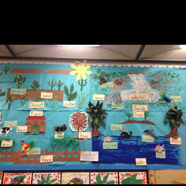 Classroom Decoration Charts For Kindergarten ~ Animal habitat bulletin board classroom pinterest