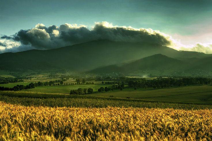 Zywiec valley- Skrzyczne mountain