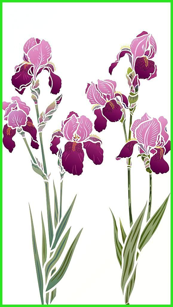 Large Iris Theme Pack Beautiful Iris Flower Stencils 2 X 2 Sheet Designer Stencils Iris Stencils 1 2 Beautiful Elegant Designer Iris Stencils In 2020 Flower Stencil Flower Painting Iris Flowers
