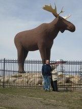 Moosejaw, Saskatchewan, late April 2011