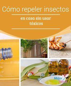 Cómo repeler insectos en casa sin usar tóxicos Seguro recuerdas, cuando eras niño, cómo tus abuelas o madre eliminaban los insectos de manera natural. Si bien algunas familias eran fanáticas de los productos químicos, otras conservaban la tradición de