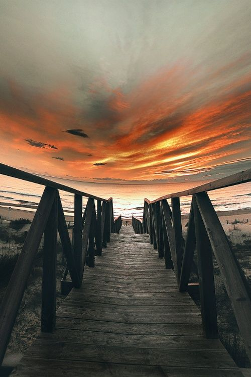 Amazing Snaps: Lets walk into the Sun. Amazing Photography