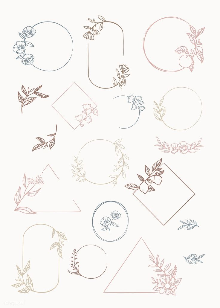 Download premium vector of Botanical frame element vector collection 846027