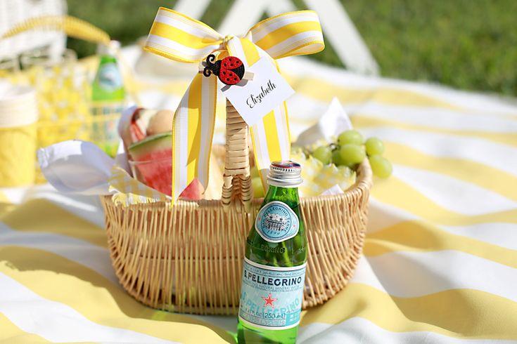 Consejos para organizar una comida campestre del patio trasero del verano!