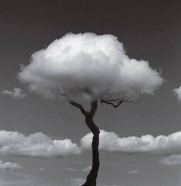 Black and White Art Photography | ... chema madoz has a unique perspective for black and white photography