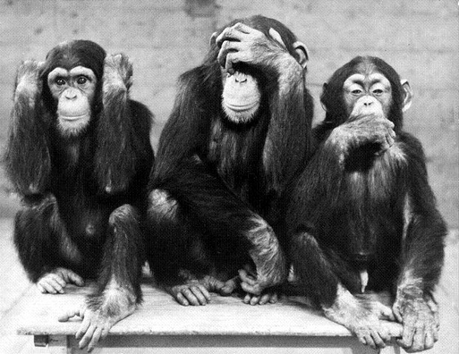 Three wise monkeys: see no evil, hear no evil, speak no evil.