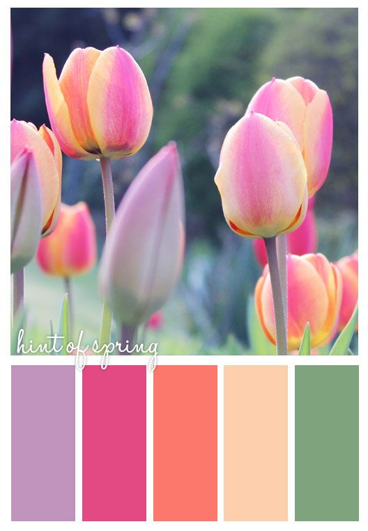 Hint of Spring palette.