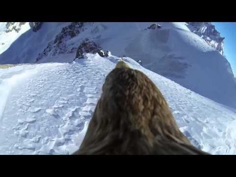 La Sabiduria del Aguila -por Juan Corazon - YouTube
