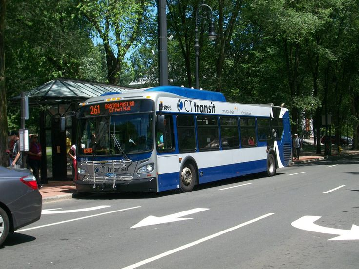 Cttransit 1866 in 2020 new haven vehicles bus