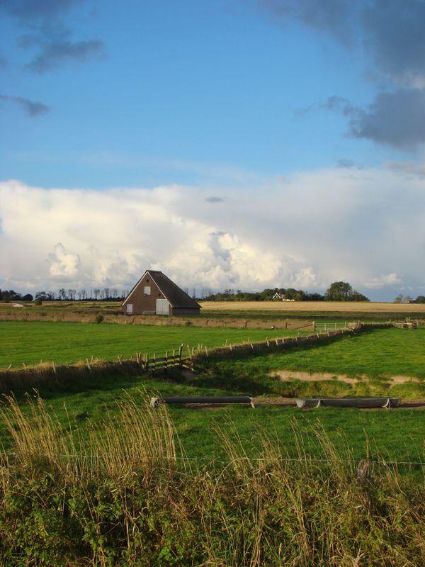 Hoge Berg, Texel, Noord-Holland.