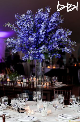 Best images about blue wedding ideas on pinterest