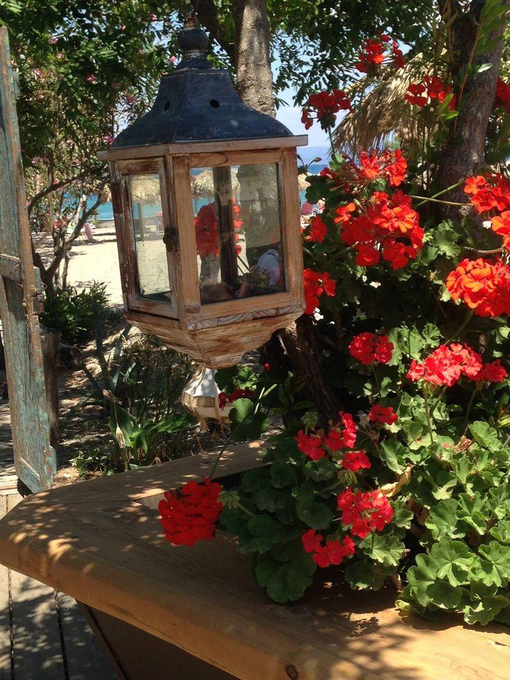 picture from #Beate Saar @Mylos Beach Bar