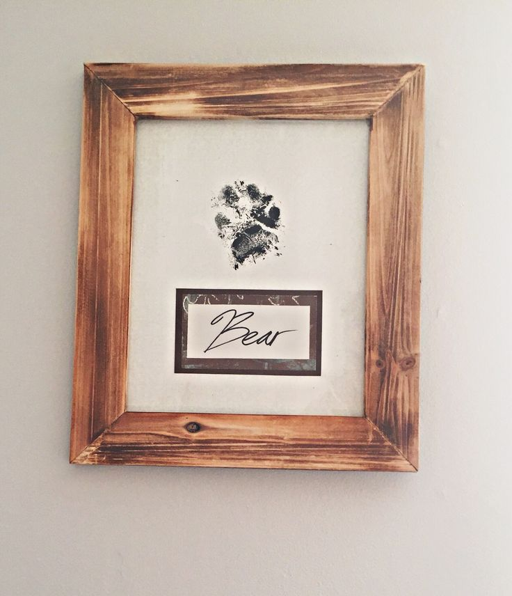 dog paw print art