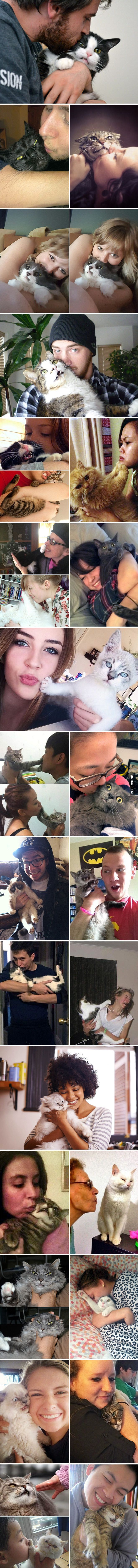 These cats are not really in the mood of cuddling...