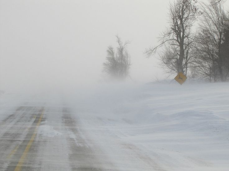 weather blizzard | Winter Weather: Introduction