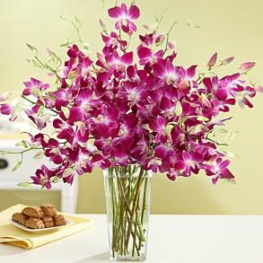 love these....Beautiful Flower, Mothersday, Purple Dendrobium, Gift Ideas, Vases, Dendrobium Orchids, Plants, Mothers Day Gift, Orchids Bouquets