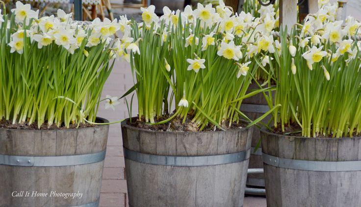 Spring in Stockholm!