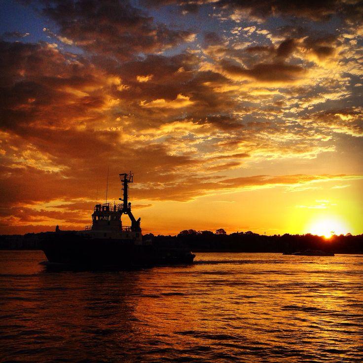 Tug boat sunset