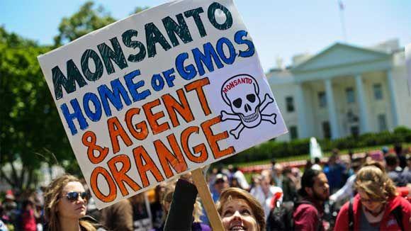 Les OGMs sont interdits dans les cafétérias de Monsanto et de la Maison Blanche | Le Nouvel Ordre Mondial