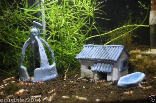 Ber ideen zu aquarium deko auf pinterest moos wasserpflanzen und aquarium fische - Nano aquarium deko ...
