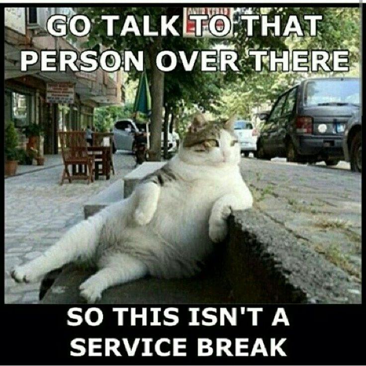 Service break Funny
