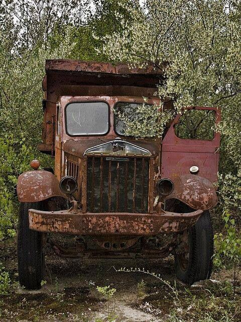 Abandoned truck, transportation, decay, rusty, photograph, photo