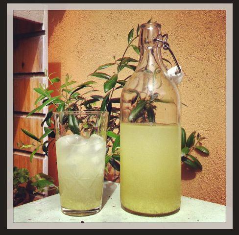Intensivt läskande dryck som bör drickas iskall en varm dag. Piggt sting från ingefäran!
