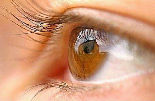 Menjaga kesehatan mata merupakan sebuah hal yang harus anda lakukan, karena mata memiliki fungsi yang sangat vital bagi perjalanan hidup seorang manusia