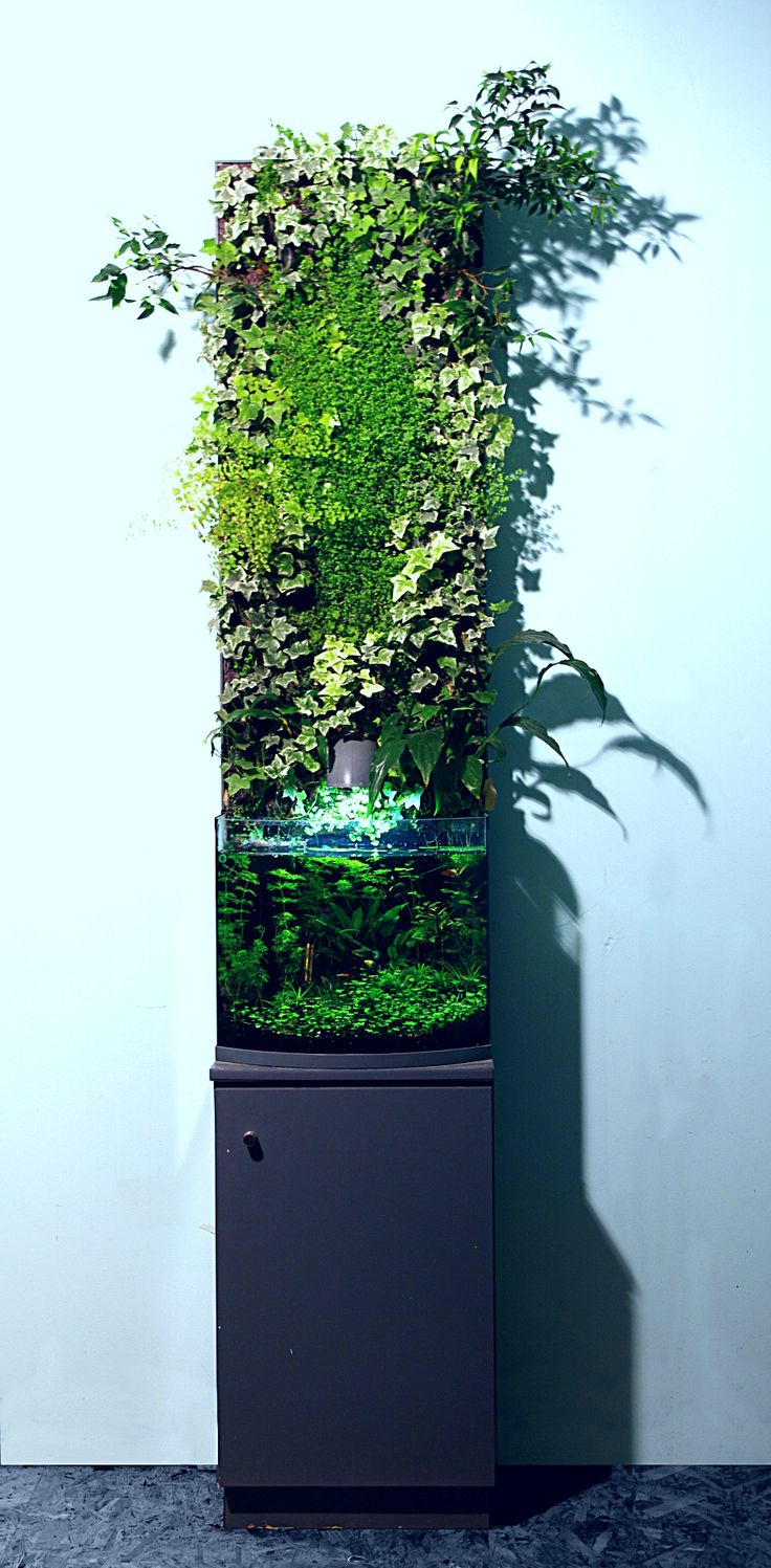 Best 20 fish tank stand ideas on pinterest tank stand for Vertical fish tank