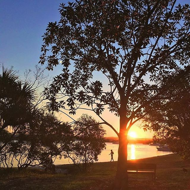 Watching the sun set over the Noosa Hinterland from Noosa Woods ☀️ Found at the end of Hastings Street in Noosa Heads, this is a popular spot for barbecues, picnics and weddings. It's the entry point to the Noosa River and end of Main Beach.