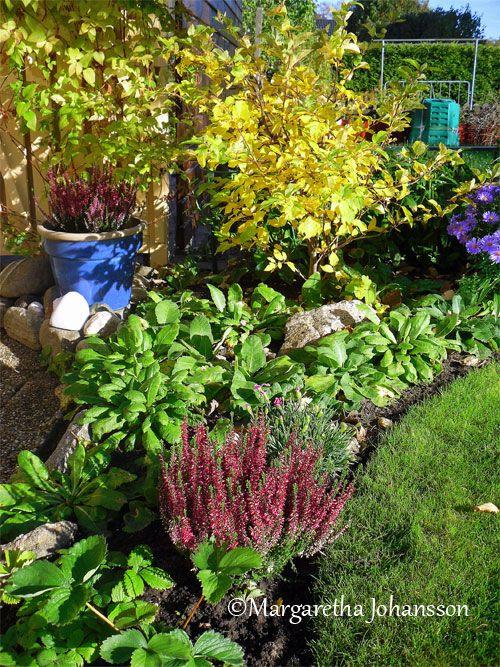 Garden Ideas For Small Gardens  http://dabbiesgardenideas.com/garden-ideas-for-small-gardens/