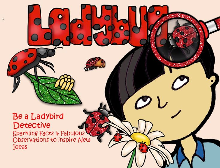 Ladybirds are found all over the world. There are 22-spotted yellow ladybirds and striped ladybirds.   There are also lots of things to be excited about when looking at the life-cycle of ladybirds. And many students love to think about the different stages.  In this booklet students are also asked to observe animals with the goal of getting inspiration for new ideas. Hopefully, these activities will make the learning fun and engaging.  This package contains: 1. Cards 2. Can you identify the…