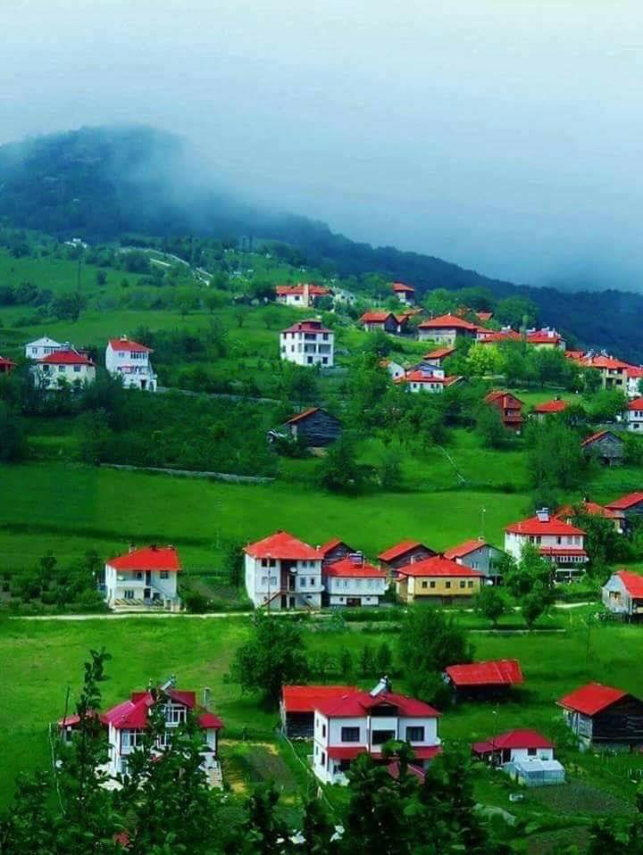 Ordu mesudiye yeşilce köyü . Turkiyemin her köşesi baska güzel. Gönderin köyünüzün fotoğrafını paylaşalım değerli üyeler.selam olsun( Ordu' ya ) .