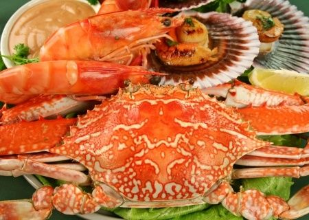 Shellfish Allergies: An Overview