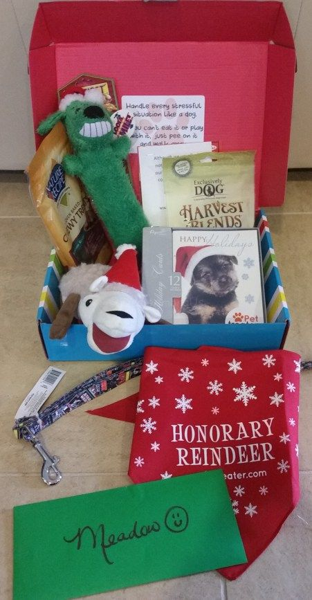 Pet Treater Holiday December 2015 Review