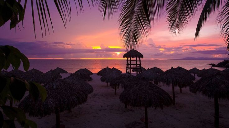Hyatt Ziva Puerto Vallarta Beach View Sunset
