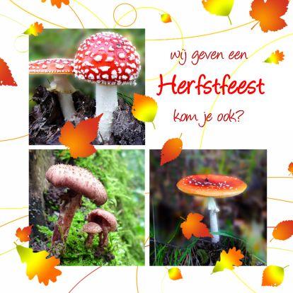 Uitnodiging herfstfeest, invitation autumn party. Change can be changed.  http://www.kaartje2go.nl/kaartencollecties/creagaat---herfst?sk_id=161